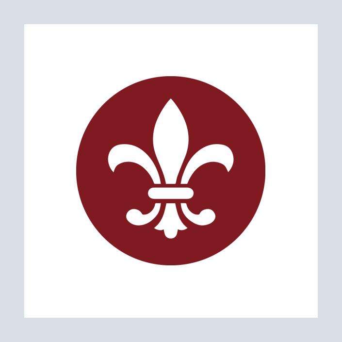 Capitalplan Icon