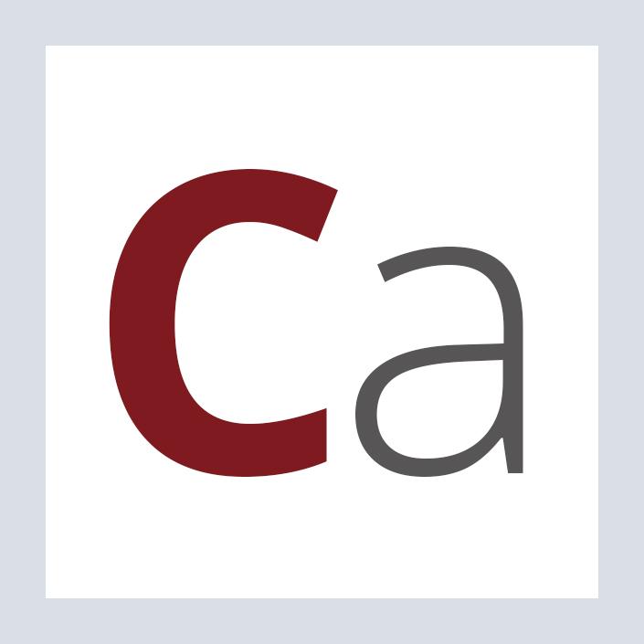 Capitalplan Schriften